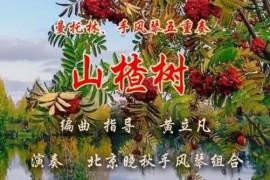 曼托林、手风琴五重奏《山楂树》——编曲、指导:黄立凡 演奏:北京晓秋手风琴组合