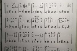 仲凯改编简易版手风琴巜天空之城》曲谱,赵军生译简谱